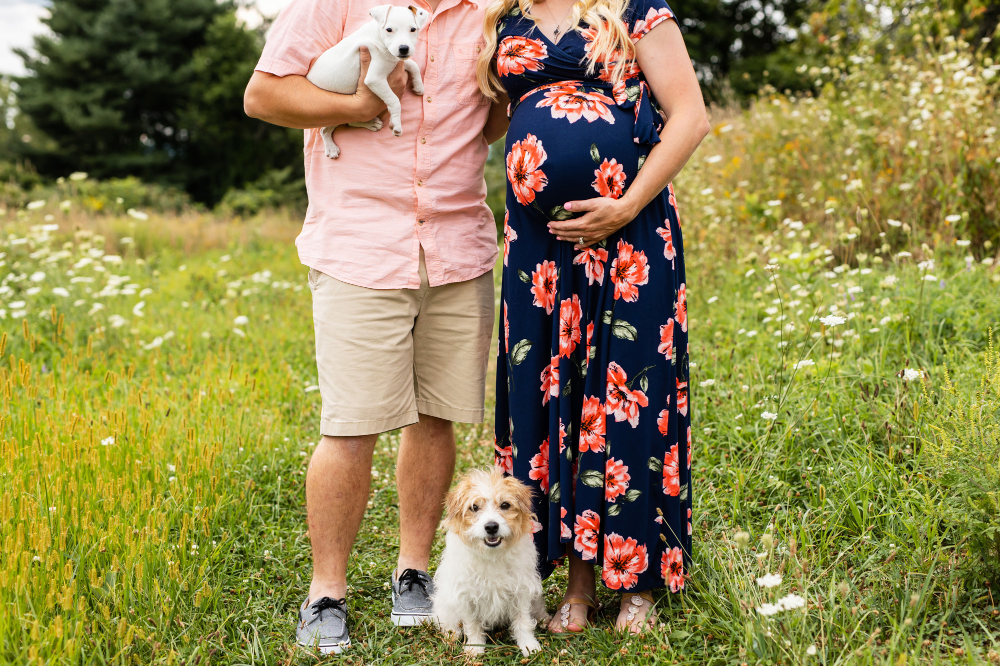 Maternity Photos with Dogs